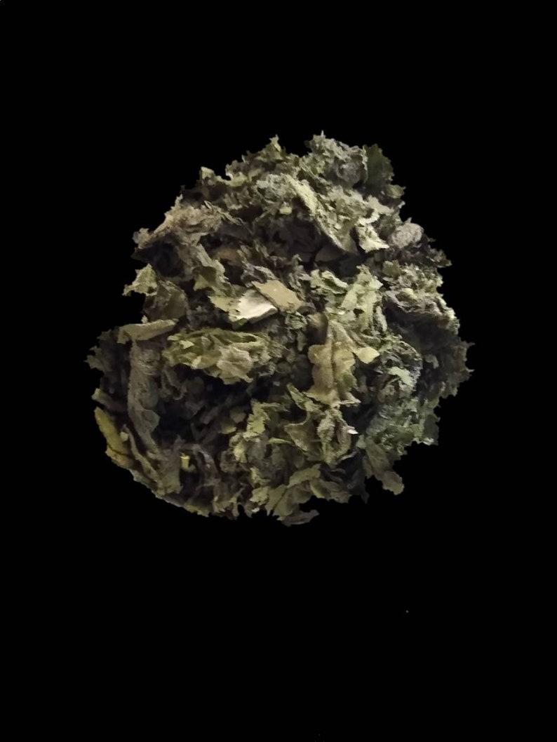 Witch's Brew Nettle & Blackberry Leaf Tea image 0