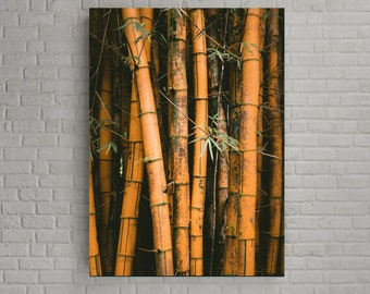 Bamboo photography Tropical paintings for the wall decoration of your home