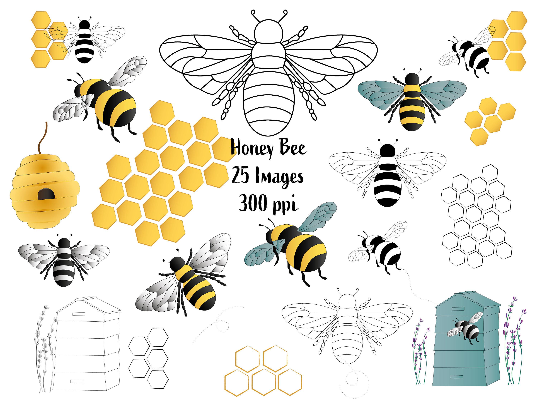 Honey Bee Clipart Commercial Use 25 Honey Bee Clip Art Image Etsy