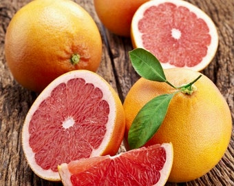 """World's Best Tasting! """"RIO RED"""" Grapefruit (4-5 Foot Tall) Offered by... a2z Plant Company™"""