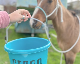 Fixed Horse Feed Equine Bucket Holder