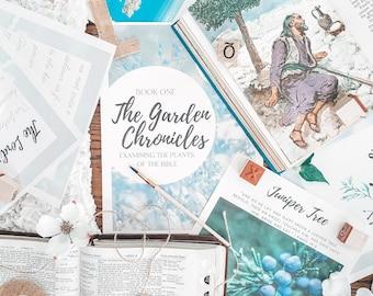 Homeschool Nature Study / Plants of the Bible / Creation Study / Homeschool Bible Activities for Kids / Scripture for Kids / Nature for Kids