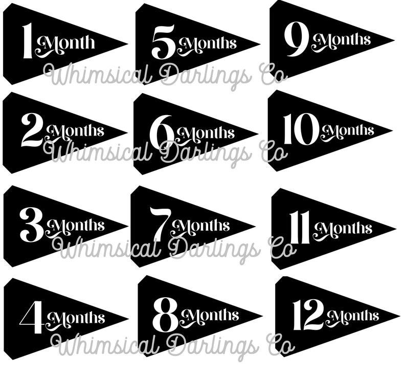 Baby Monthly Milestone Pennant Flag Printables Black