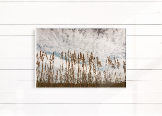 Minimalist Beach Wall Photography Beach Decor Grass Landscape Print Coastal Landscape Minimalist Coastal Decor