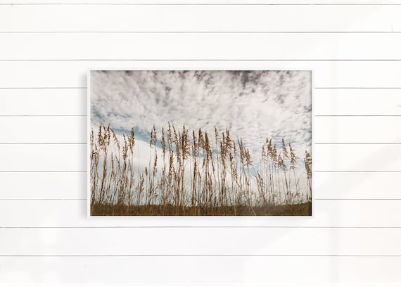 Minimalist Beach Wall Photography Beach Decor Grass Landscape Print Coastal Landscape Minimalist Coastal Decor