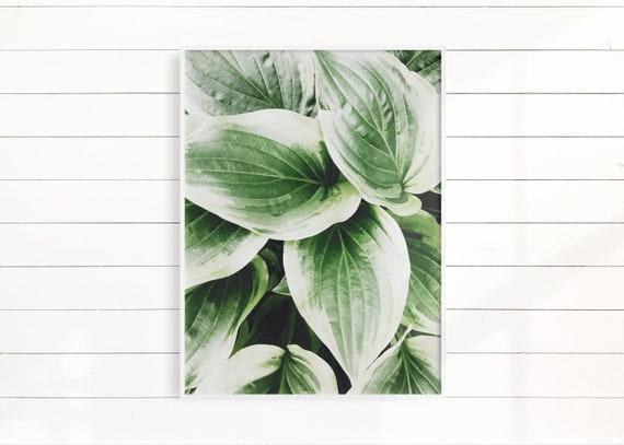 Botanical Wall Art Print, Greenery Artwork, Bedroom Wall Decor Idea, Crazy Plant Lady Best