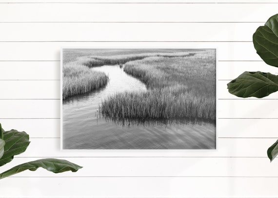 Marsh Landscape, Large Art, Coastal Art Print, Beach Coastal Decor, Marsh Print