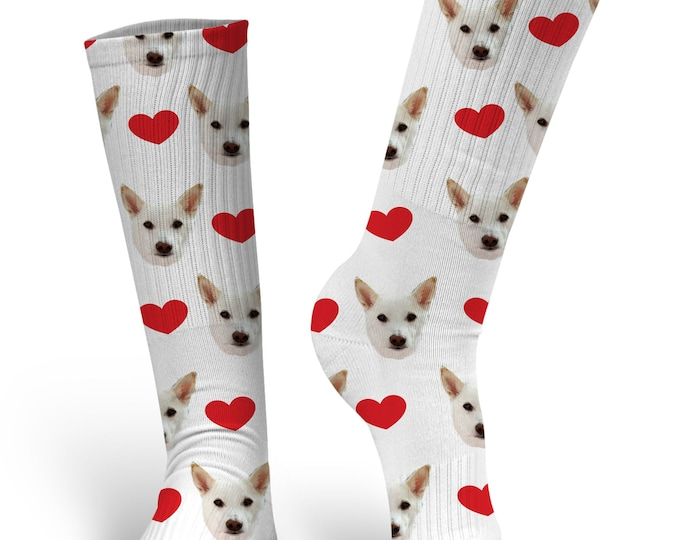 Valentines Day Socks, Custom Dog Socks - Put Your Dog on a Sock, PupSocks, Be My Valentine Socks, Valentines Socks