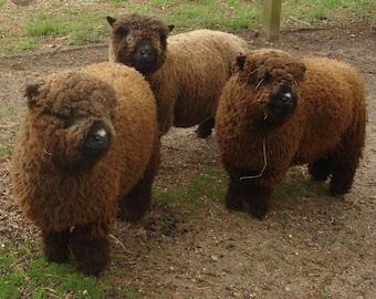 Raw wool | Etsy