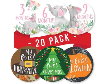Baby Elephant Monthly Milestone Stickers for Girls