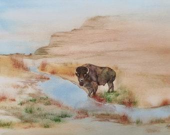 Buffalo watercolor original