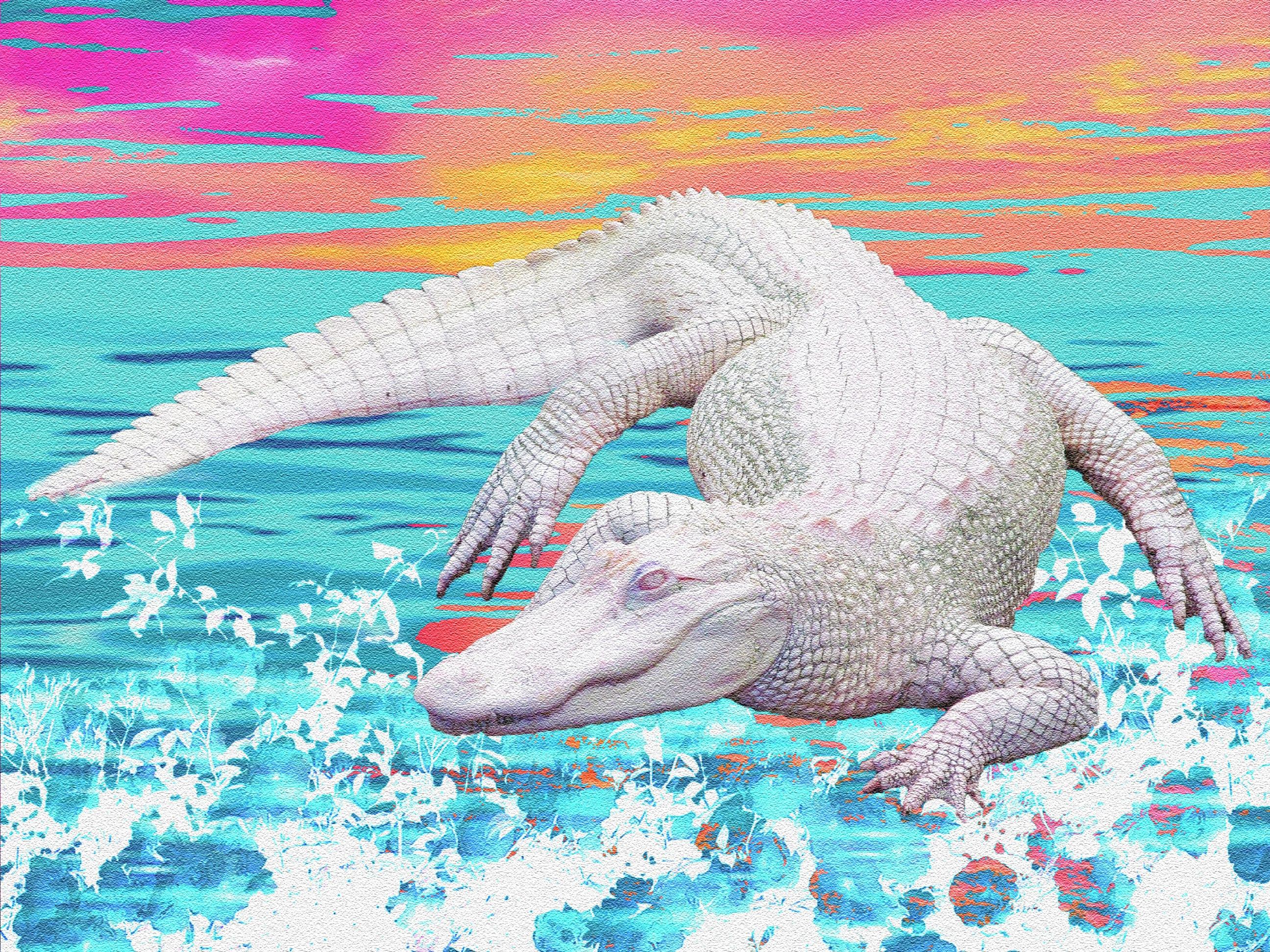 Alligator Print Etsy