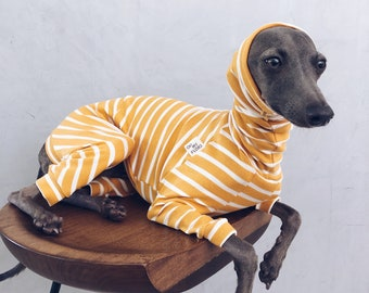 italian greyhound and whippet clothes / iggy jumpsuit / Dog Sweater / dog clothes / ropa para galgo italiano y whippet/ STRIPED JUMPSUIT