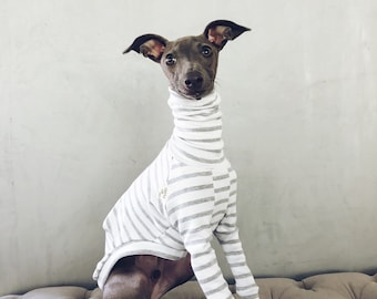 italian greyhound and whippet clothes / iggy clothes / Dog Sweater / stripes dog clothes / ropa para galgo italiano y whippet