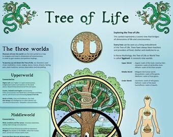 Tree of Life, ecofriendly A3 Print, Wall Art Poster, Infographic, Correspondance Chart, Celtic, Pagan, Druid, Tree of Life print