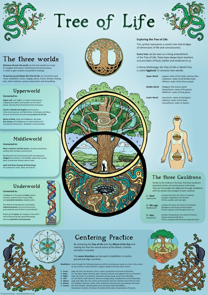 Tree of Life  Infographic  A3 Poster image 0