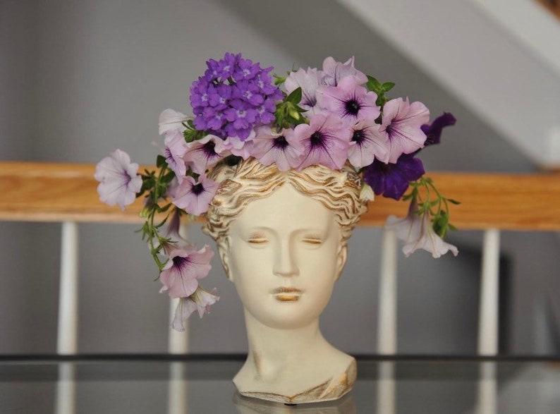 Large Size Greek Goddess Female Statue Head Concrete Flower Planter For Home and Garden Decoration Roman Venus Face pot