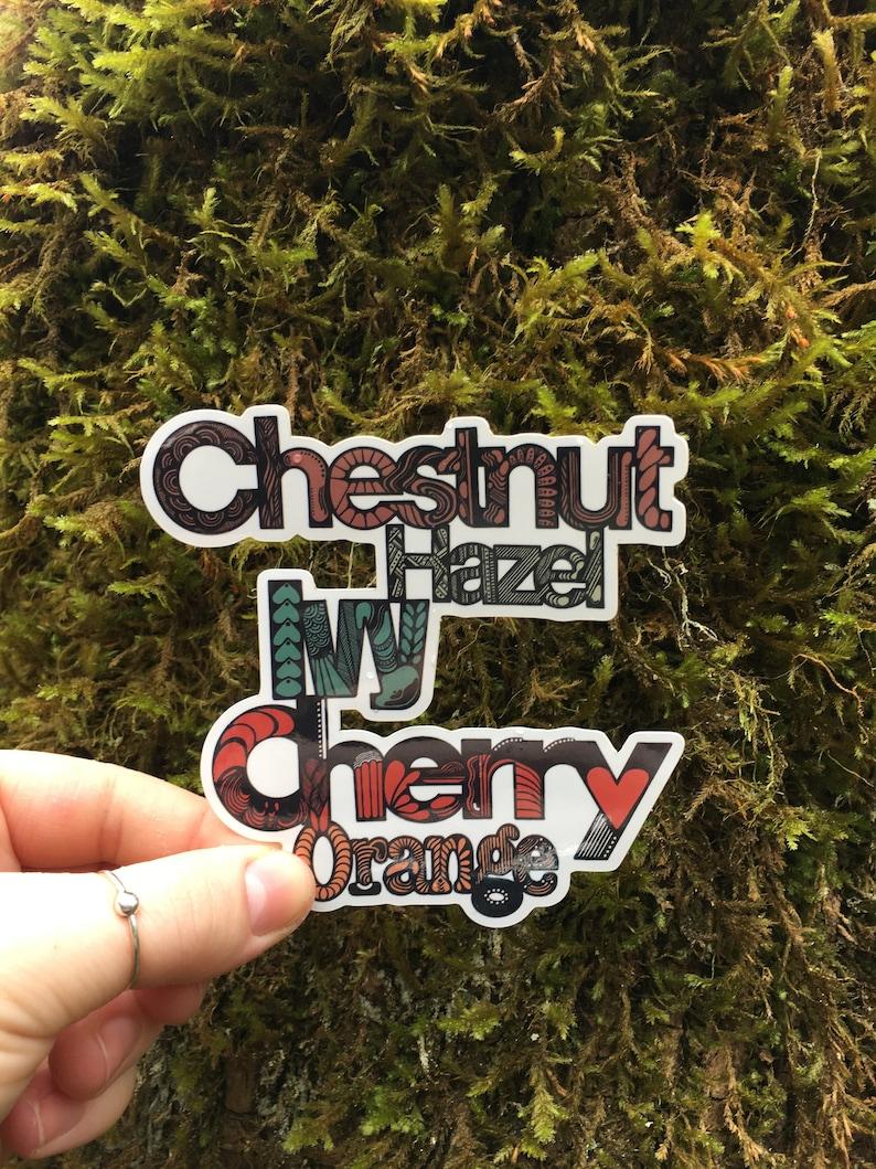 Chestnut Hazel Ivy Cherry Orange CA Sticker Chico State Chico Sticker Streets West Coast Vinyl Decals Computer Sticker Car Decal