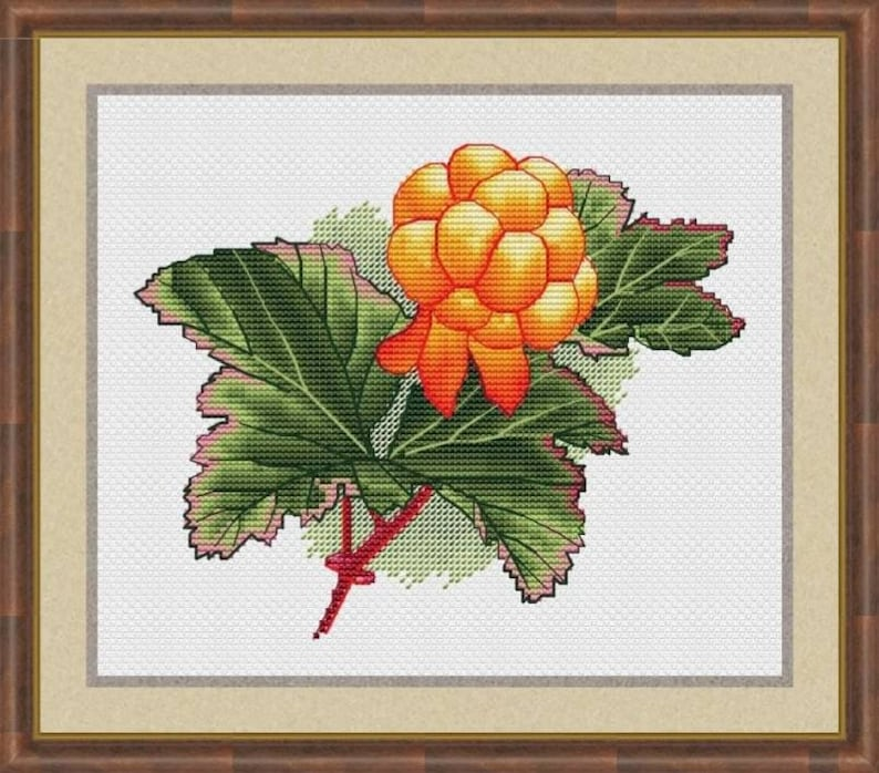Cloudberry Counted Cross Stitch Pattern Plant Bake Apple image 0