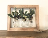 Hanging Wall Planter for Succulents, Air Plants, Stems