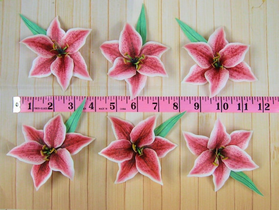 12 STARGAZER LILIES 3D Edible Wafer Paper LILY FLOWERS Cake Decorations Pink