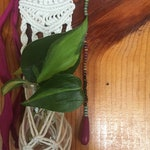 Suede Dreamcatcher | Macrame Plant Hanger | Plant Propagation | Bohemian Home Decor | Wall Hanging | Whimsical | Indoor Plant Art