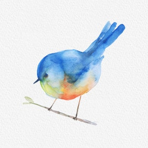 Png sparrow clipart Png watercolor birds Png bird clipart Png robin clipart Png watercolor file Watercolor clipart Planner stickers