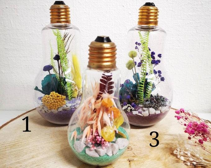 Vegetable bulb
