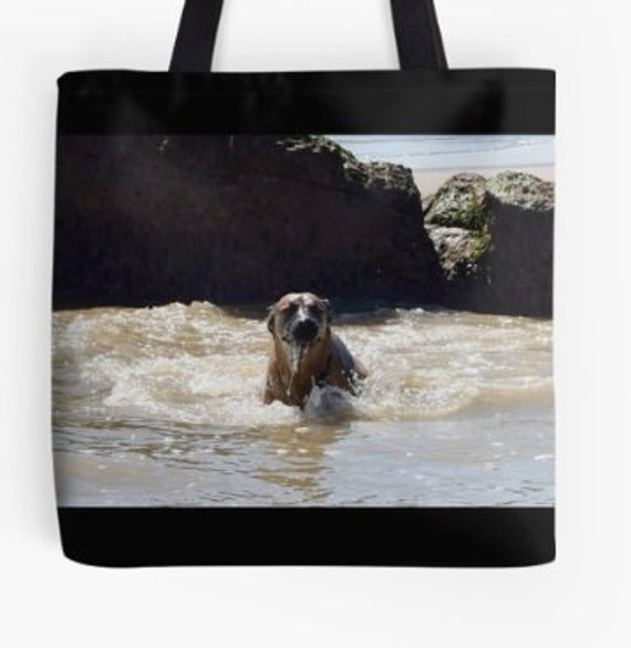 Tote Bag Malinois Dog in Rock Pool double sided lined