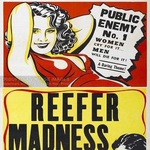 Weed Bizarre Strange Marijuana Poster 1957 Smokey Bear/'s Story of the Forest
