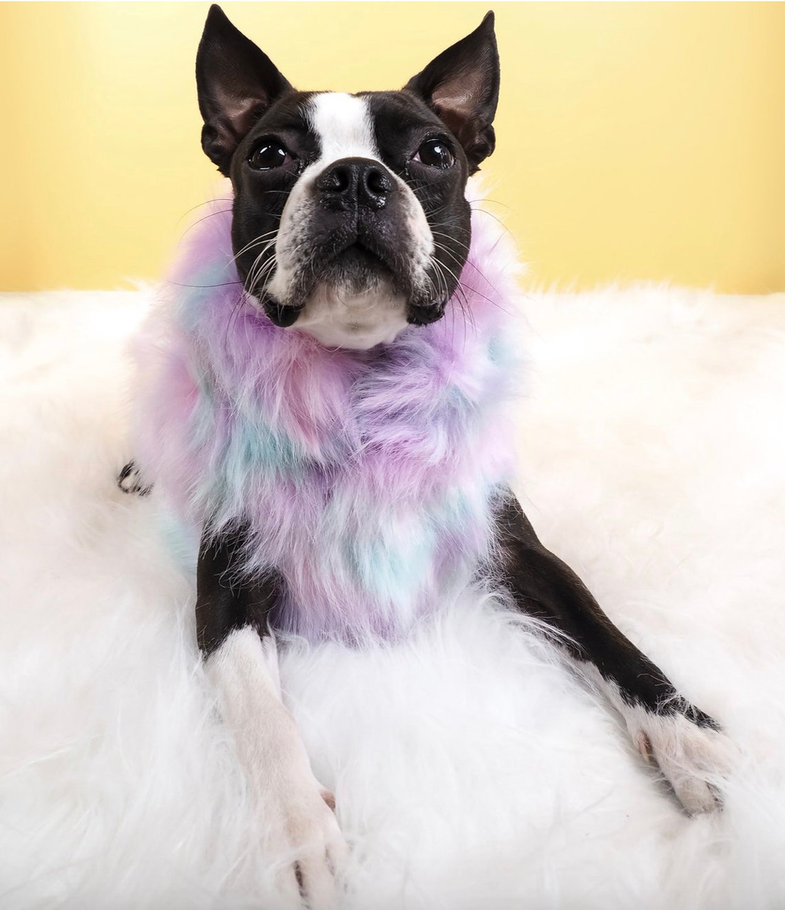 Marshmallow Faux Fur Dog Jacket image 2