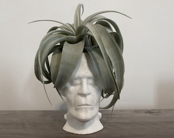 Frankensteins Monster White Geometric Halloween Xerographica Air Plant Display Desk Planter Modern Decor with Live Airplant included