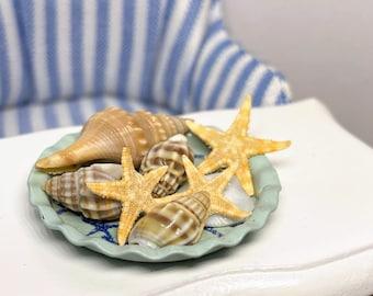 Filled Beach Jar w Starfish and Shells All Through the House Dollhouse Miniature