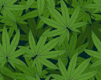 Herban Sprawl - Cannabis Leaves Allover - 1/4 yard