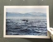 Fine Art Print, Whale Tale in the Ocean