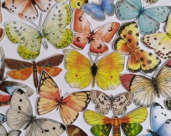 30 pcs Butterfly paper cutouts insects junk journal embellishments entomology inspiration pack penpal kit