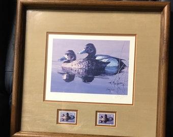 "1986 - Minnesota Duck Stamp Print - ""Lesser Scaup"" Artist: Brian Jarvi"