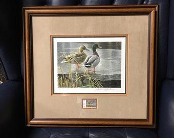 Art 1985 Canada's First Wildlife Habitat Conservation Stamp DUCK Print Robert Bateman