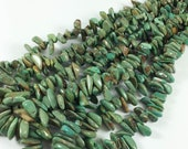 "Turquoise nuggets, top-drilled tumbled chips, GRADUATED STRAND 7-25mm, 16"" strand, soft greens with brown"