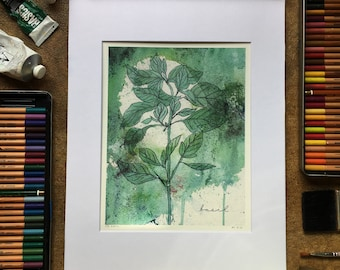 BASIL WATERCOLOR PRINT multimedia 8x10, matted to 11x14