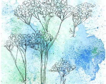 QUEEN ANNE'S LACE yarrow watercolor print, multimedia 8x10, matted to 11x14