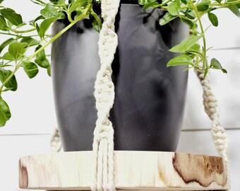 Macrame Plant Hanging with Timber Slab | Natural Boho Decor | Australian Made