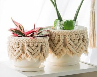 Planter, Macrame planter, house planter, Plant Pot, Plant holder