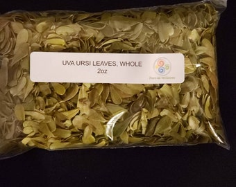 Uva Ursi Leaves, whole 2oz and Container ***Start your own Herb Collection*** Free Shipping