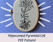 Hippocampal Pyramidal Cell Beginner Embroidery Pattern, Neuron DIY, Modern Hand Embroidery PDF, Science Embroidery, Science Art, Neuro Art