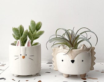 Cute Animal style ceramic planters with Drainage hole, succulent pots, home decorations, house warming gift, indoor planter, garden planters