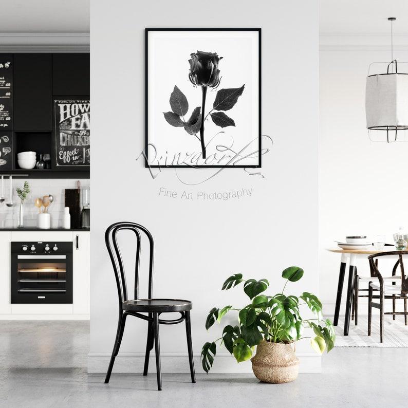 Black Rose 1 Black and White Print Wall Decor Flower Print Floral Print Beautiful Flowers Office Decor Rose Art Designer Wall Art