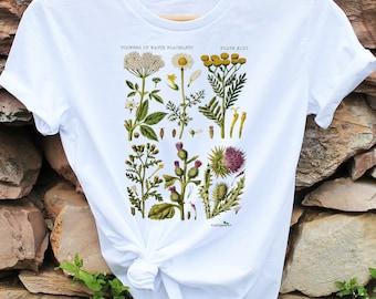 Botanical tshirt  100% Organic cotton  Antique Botanical Print   Flower tee