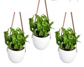 Leather Strap Hanging Planter, Set of 3 Ceramic Hanging Planters With Leather Straps, Ceramic Wall Vases, Leather Flower Pots