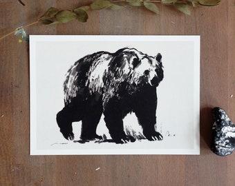 Bear Animal Drawing Black and White   Postcard   Digital Illustration by Afrodite Gaki